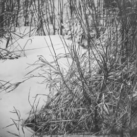 Snow Currents I by Armin Mersmann